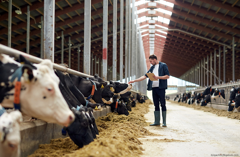 Livestock and Farm Security Helps Prevent Agricultural Crime and Loss